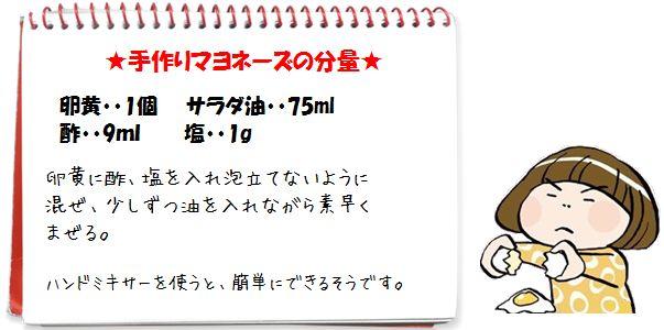 マヨ3.JPG